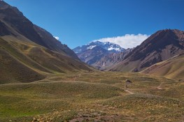 Valle_Aconcagua 2