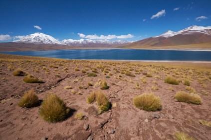 San_Pedro_De_Atacama_Lagune_Miscanti
