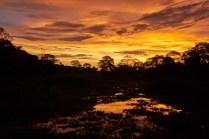 Pantanal_coucher_soleil 3