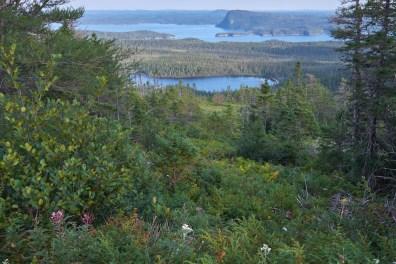 Vue panoramique du parc de Terra Nova