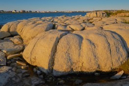 Thrombolites côte ouest de Terre-Neuve
