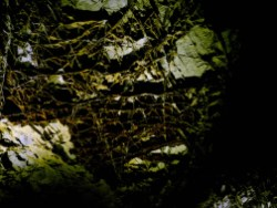Dans la grotte de Wind Cave