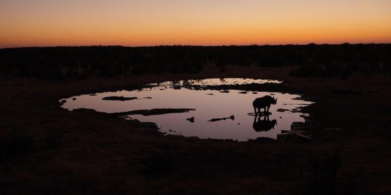 De Swakopmund à Etosha en Namibie
