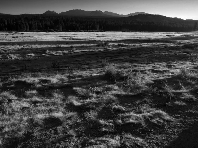 Frost kissed Tuolumne Meadow