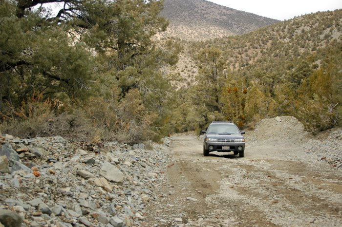 The Sube on the way to Telescope Peak, Death Valley NP