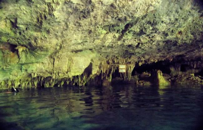 swimming in dos ojos cenote near Tulum Mexico