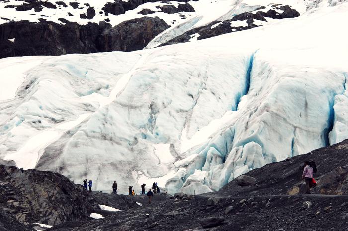 Exit Glacier at Kenai Fjords National Park