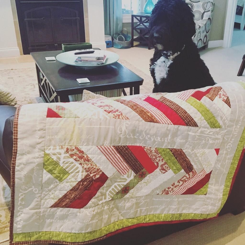 Fitz w-Ruby & Winston's Quilt