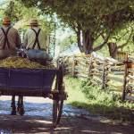 03 – Amish-Dudes