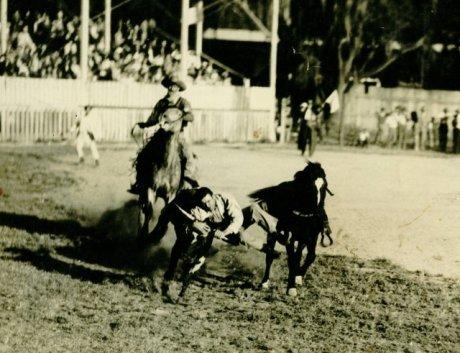 Jack Case archive: Rex, the Wonder Horse
