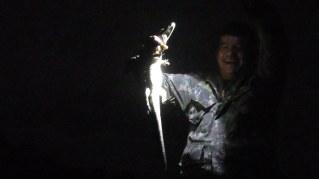 Jean captures the dazzled caiman