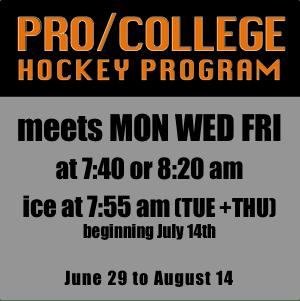 2020 ProCollege Hockey Program
