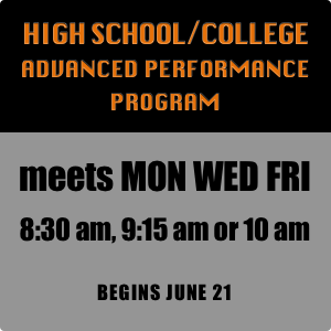 High School-College Advanced Program