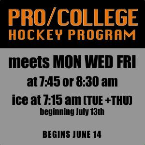 Pro-College Hockey Program