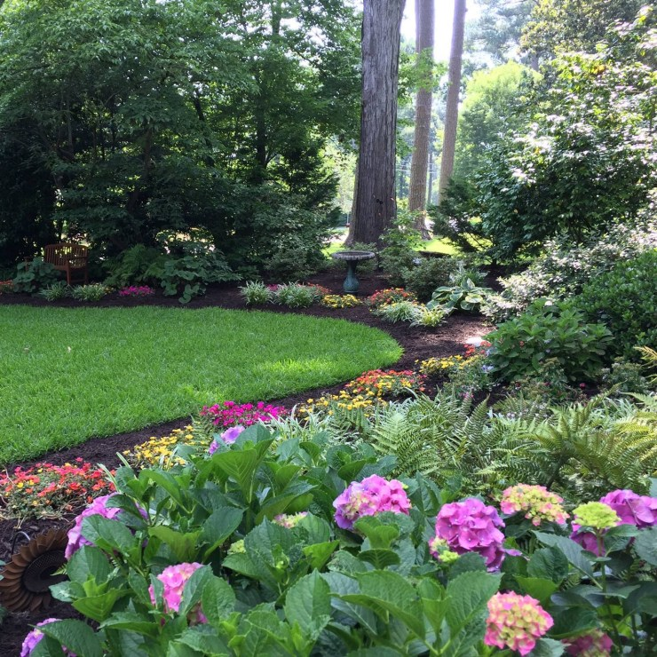 beautiful mix of plants in for this Virginia Beach home