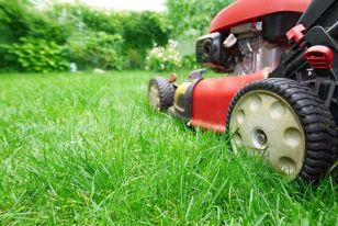 Lawn Maintenance Landscaping