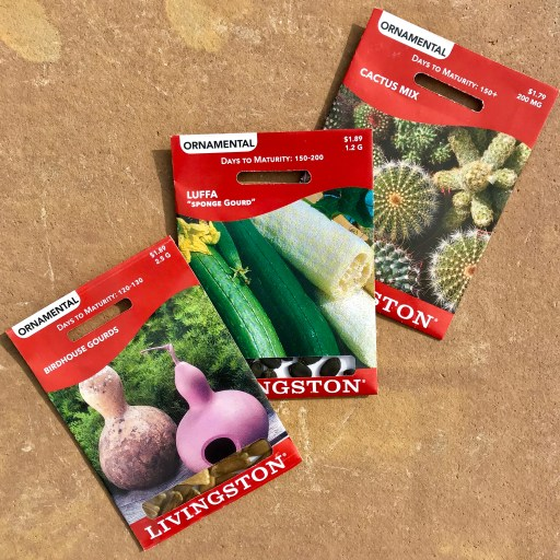 2020 Seeds - Fun Ornamentals