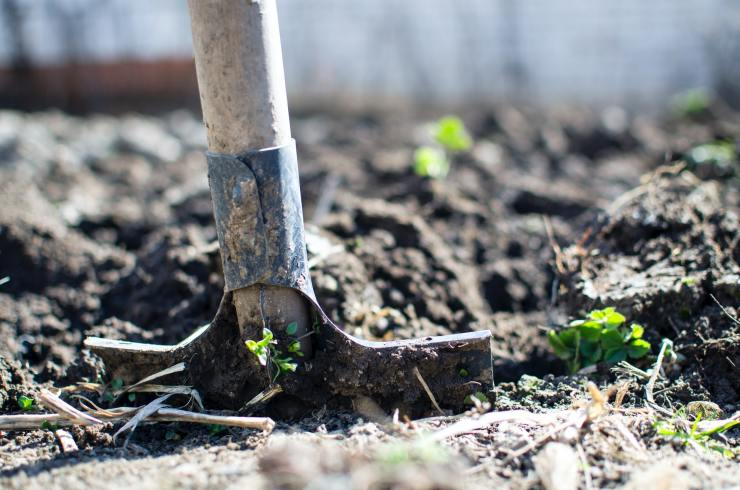 prepare the ground for spring garden planting