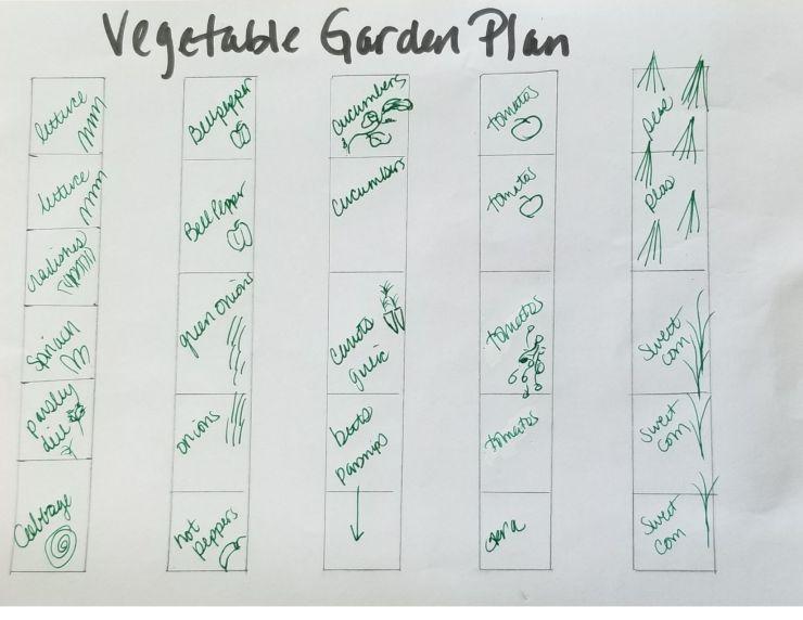 make a vegetable garden plan