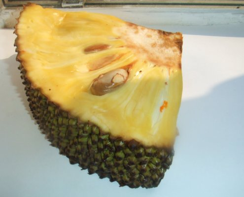 Photo of Cut jackfruit