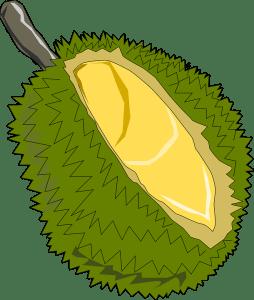 jackfruit fav icon
