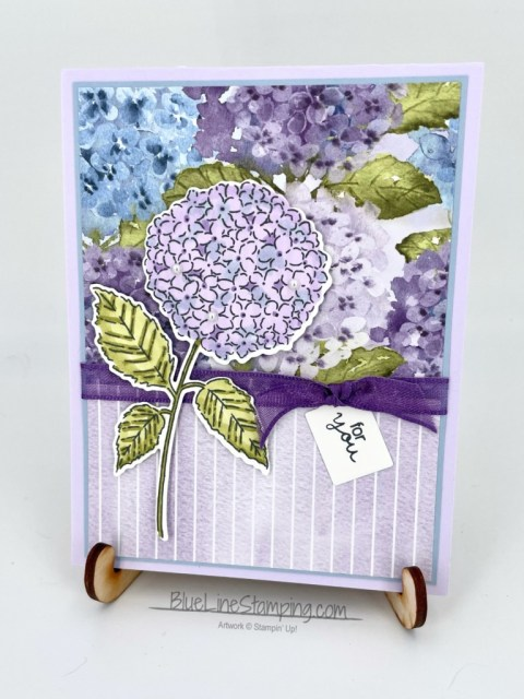Stampin' Up!, hydrangea hill, hydrangea haven, jackie beers