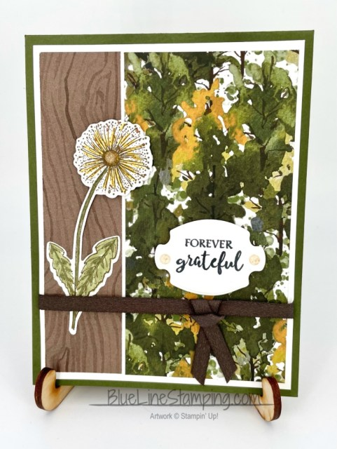 Stampin' Up!, Beauty of the earth, Garden Wishes, Dandy Wishes, Grapevine