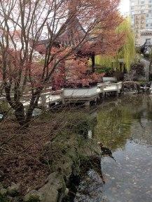 chinese-gardens21