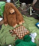 Gorilla and sleepy koala about to start a new game
