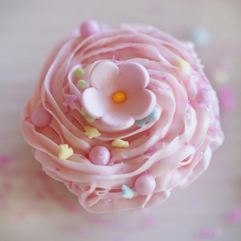 pink cupcake with sprinkles by Jackie Alpers