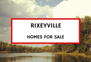 rixeyville va homes for sale