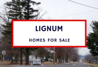 lignum va homes for sale