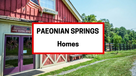 Paeonian Springs VA Homes For Sale