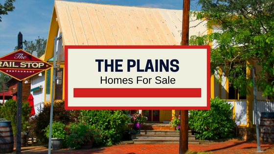 the plains va homes for sale
