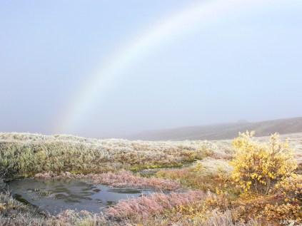 A Mist Rainbow on the Dalton Highway
