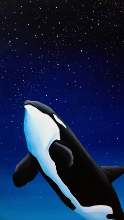 Orca by Night - Wallpaper