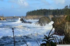 Cape Arago Lighthouse 2