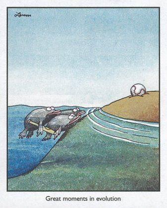 Gary Larsen cartoon on Evolution