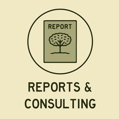 Arborist Report Toronto