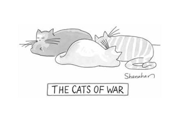 war-cats