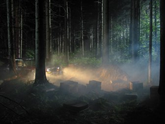 gregory-crewdson-man-in-the-woods-5