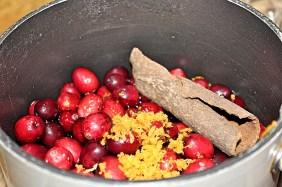 cranberry 4