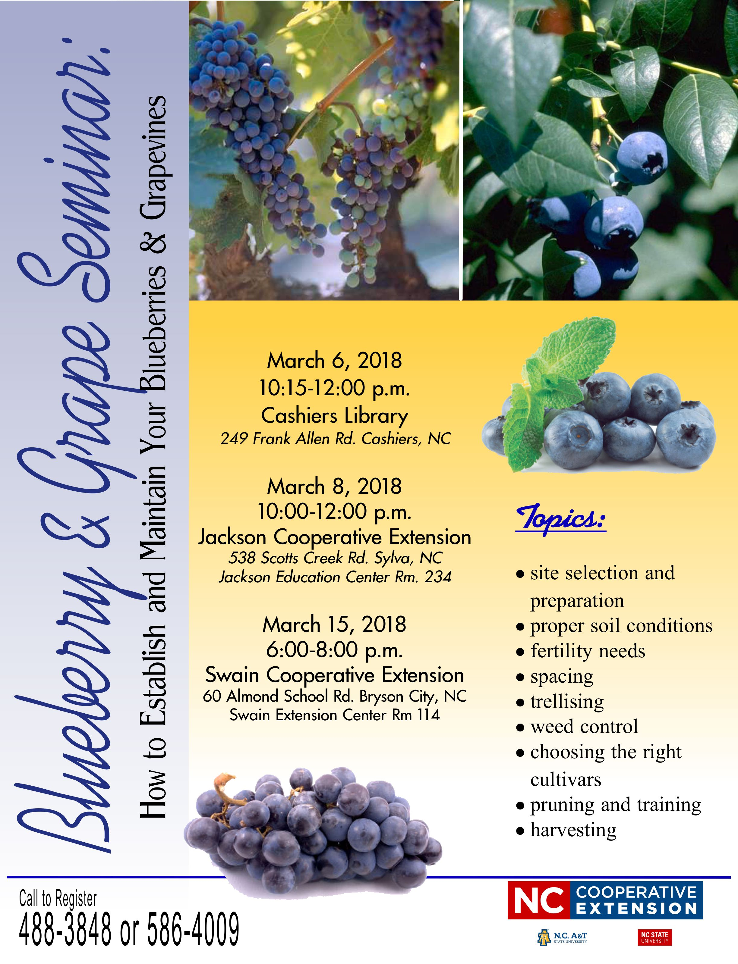 managing your blueberry grape