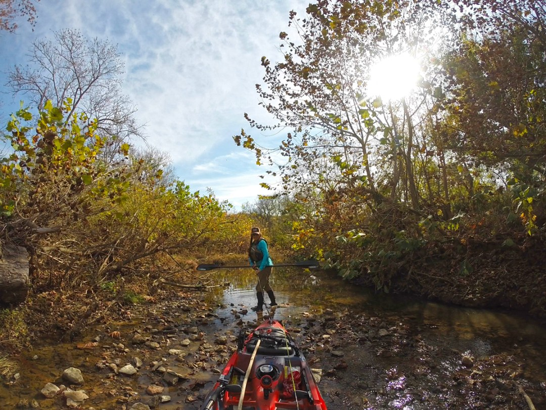 dragging Jackson Kayak Coosa up a skinny creek