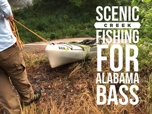 Scenic Alabama Creek Fishing for Alabama Bass
