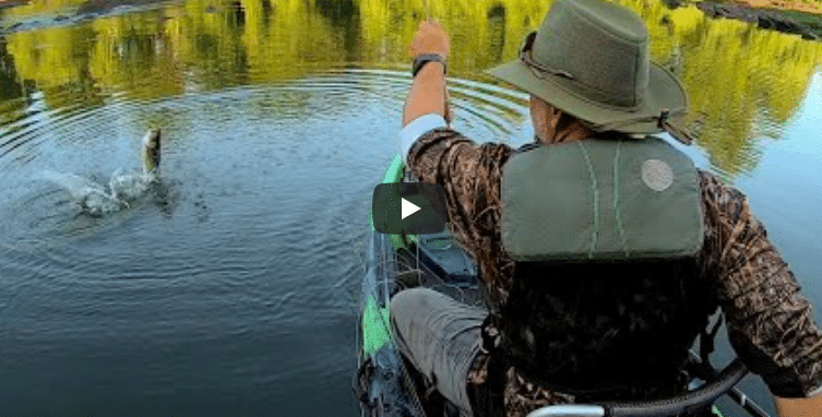 Fly Fishing for Shoal Bass