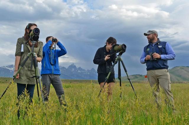 what do wildlife biologists do