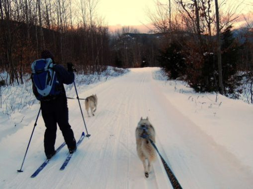 Bear Notch Ski Touring