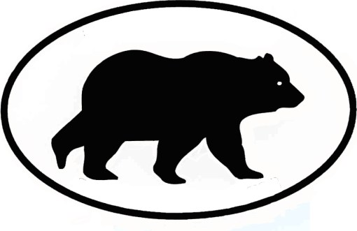 Black Bear Realty
