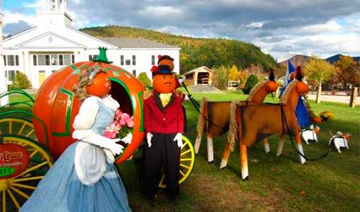 jackson pumpkin people